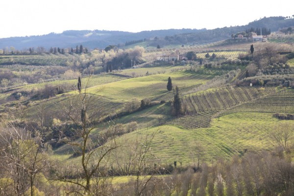 Another view of the Tuscan hills